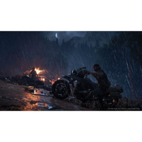 days-gone-ps4 (3)