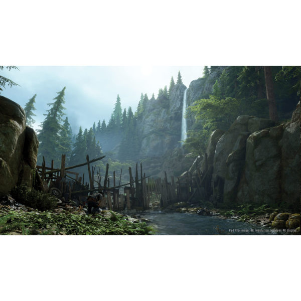 days-gone-ps4 (4)