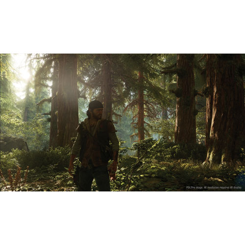 days-gone-ps4 (8)