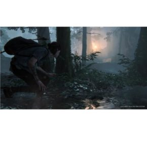 the-last-of-us-part-ii-jeu-ps4.-
